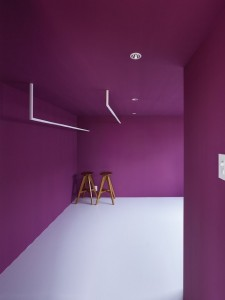 Pantone-color-of-the-year-2014-Radiant-Orchid-5