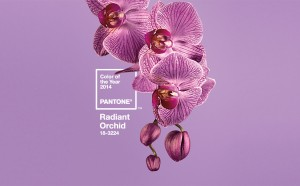 Fashion Color Of Year 2014