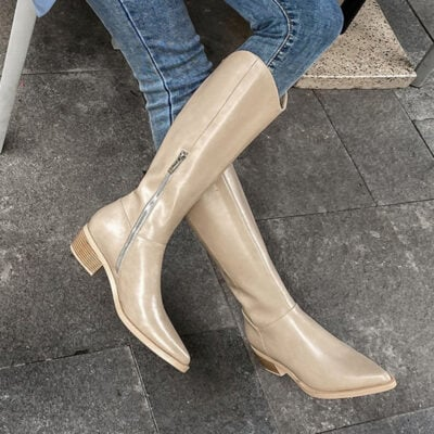 Chiko Lillie Pointed Toe Block Heels Boots